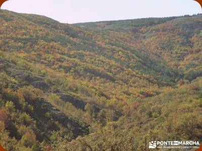 Parque Natural de Tejera Negra - Cantalojas - Guadalajara - Sierra de Ayllón;senderismo vip